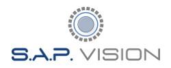 Logo S.A.P. VISION TVCC Videosorveglianza Videocontrollo